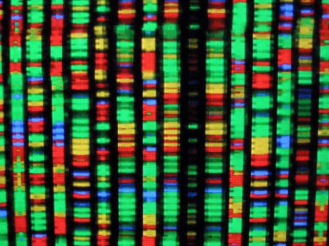 Un approccio big data alla genomica: così nasce la medicina personalizzata