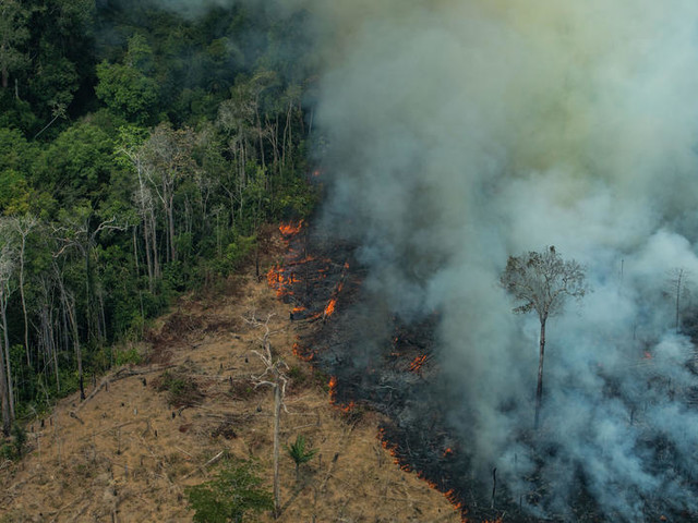 Gli incendi in Amazzonia stanno diventando un problema in primis per il Brasile