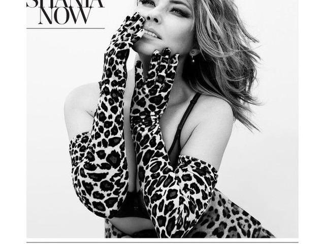 """Shania Twain - la recensione di """"Now"""""""