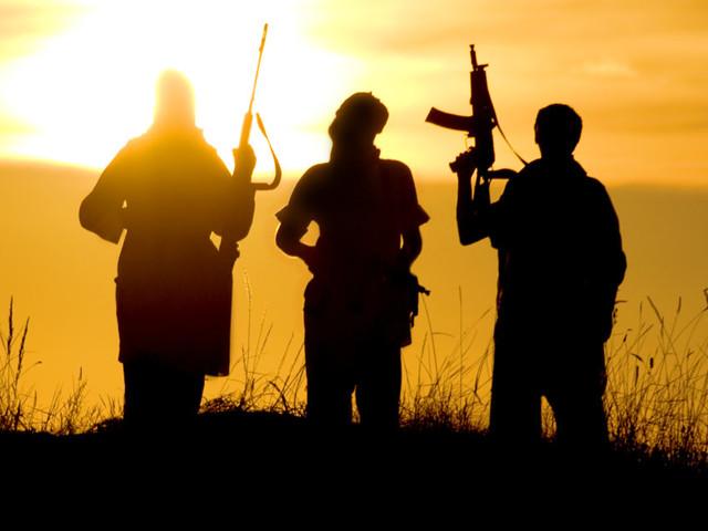I lupi in branco, la fascinazione dell'Isis e il nichilismo che si fa jihad