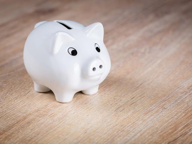 Zuinige Nederlander is tevreden met spaargeld