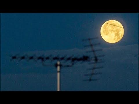31 Januari : Super Blue Moon Eclipse: It's not just a lunar eclipse, or a Blue Moon, or a supermoon. It's all three!