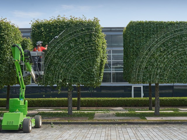 Rolls-Royce wants you to know how precisely it cuts its trees