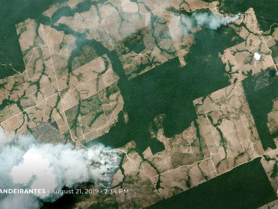 Zoveel bosbranden in een relatief nat jaar: daar kan alleen de mens achter zitten