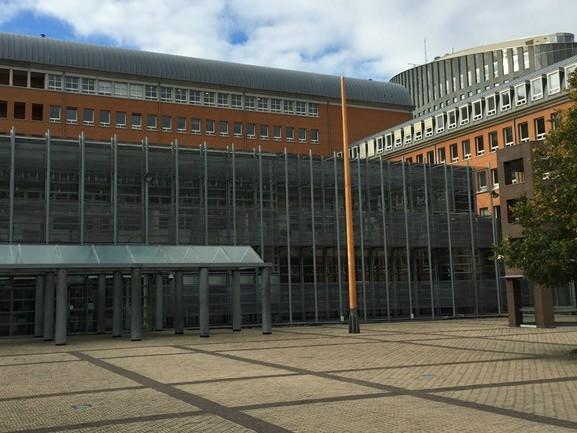 Werknemer verliest opvallend vaak van werkgever bij de rechtbank in Den Bosch: 'Werk aan de winkel'
