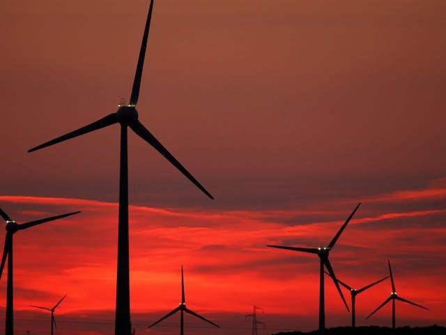 'Duitse dochter Tennet werkt energietransitie tegen'