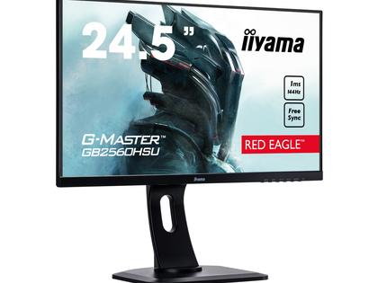 Iiyama G-Master GB2560HSU - Betaalbare snelheid