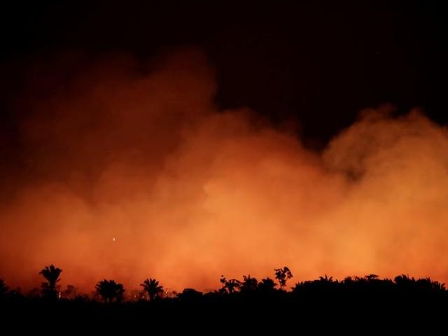 Bosbranden Brazilië treffen ook Bolsonaro's positie
