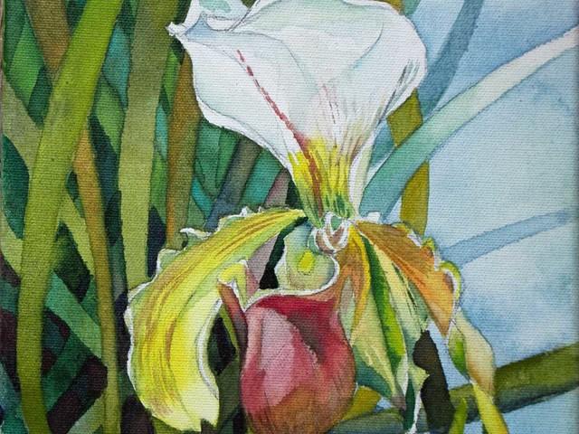 Auf der Suche nach Motiven für ein Orchideen Aquarell