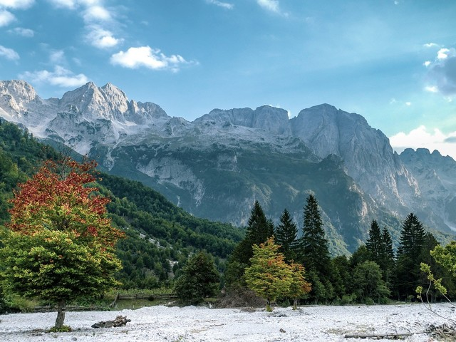 'Vervloekte bergen' goed voor persprijs