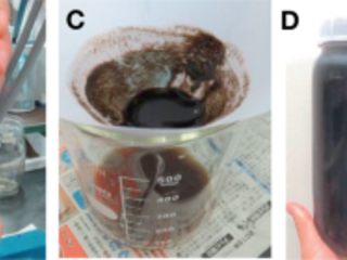 """Japan team develops solvent-free method for """"milking"""" algae to harvest carbohydrates and phycobiliproteins"""
