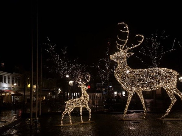 Zwolle is een tijdelijke route rijker: de Lichtbeeldenroute