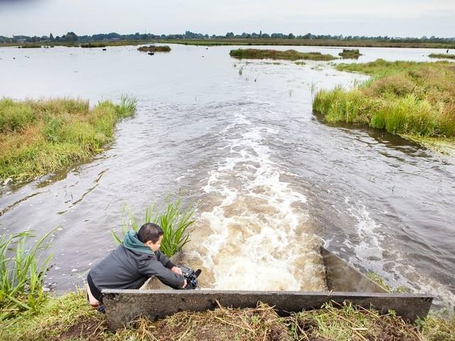 De waterschappen hebben last van hun eigen succes