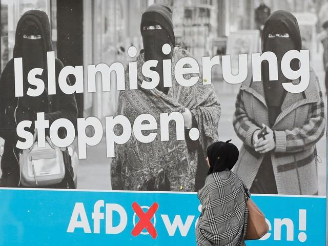 De Duitsers hebben gekozen voor 'alternatieven', maar wat willen ze nou eigenlijk?