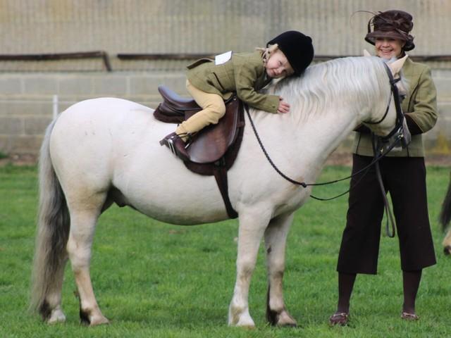 JeugdCie: Stuur jouw mooiste knuffelfoto met Welshpony in!