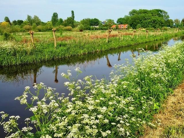 Grote regionale verschillen crowdfunding Nederland