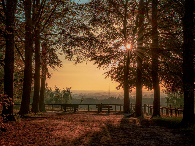 Hier kun je herfst optimaal beleven in Nederland