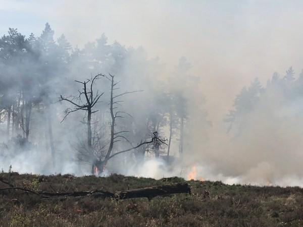 Kans op uitbreken snel uitbreidende natuurbrand, code oranje voor Overijssel