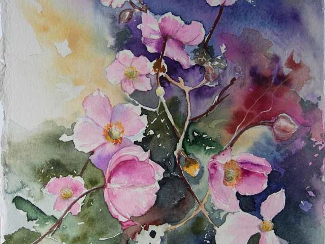 Blumen und Blüten im August