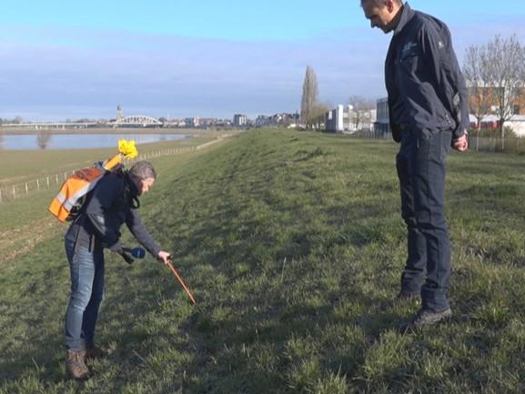 Meer schade aan dijken langs de IJssel door honden