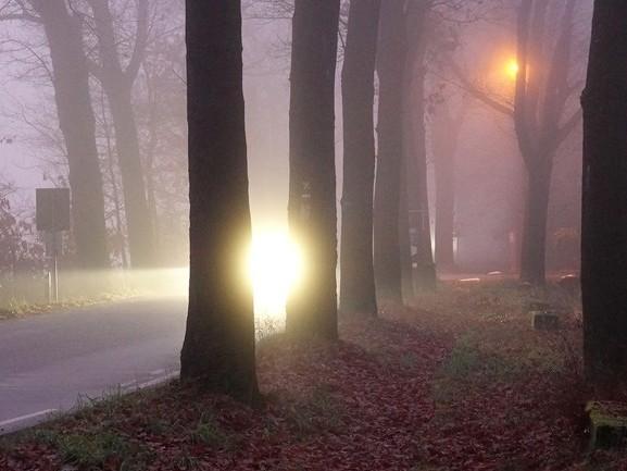 Dichte mist in Brabant: minder dan 200 meter zicht [FOTO'S]