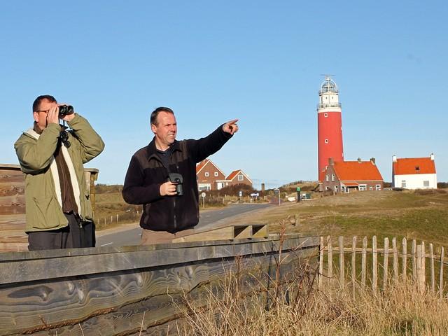 Kom vogels kijken op Texel