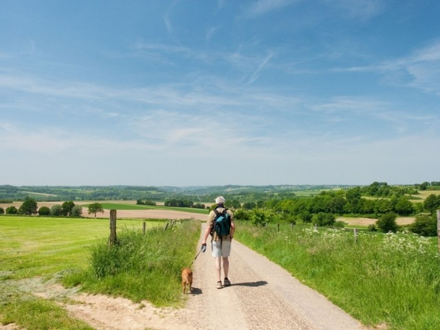 Longlist 'Wandelroute van het Jaar 2021' telt 17 kanshebbers