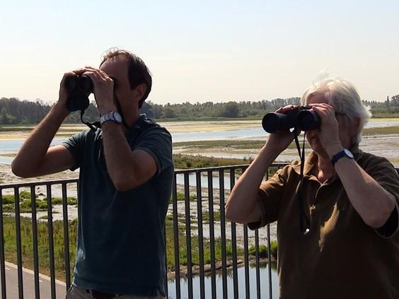 Wouter en Frieda tellen de ganzen in de Biesbosch en het waren er meer dan vorig jaar