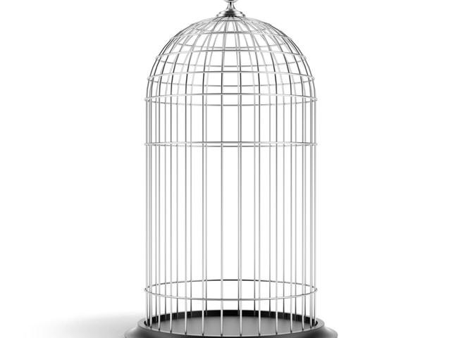 Macht is (beschikken over andermans) vrijheid