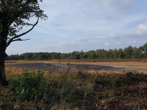 """""""Het wordt natter maar grondwaterstand in Overijssel is nog lang niet op peil"""""""