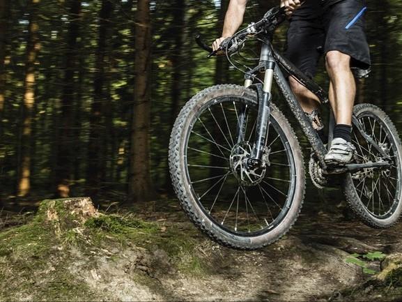 Mountainbikers opgelet: draad gespannen op route over Lemelerberg