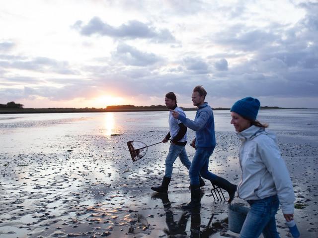 Friesland en de Waddeneilanden beloven je ruimte en rust