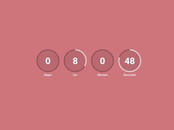 Krezip op Pinkpop 2019? Het lijkt er verdacht veel op! 'Ze gaan gewoon weer spelen'