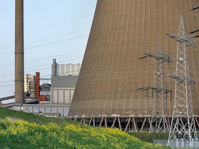 Biomassasector stort in