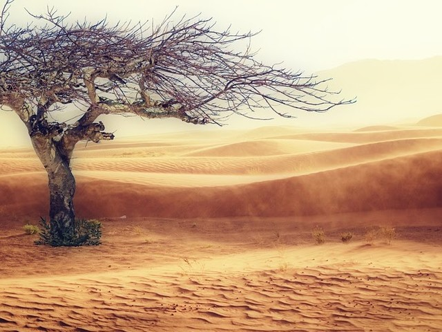 Klimaat-klacht tegen ING ontvankelijk verklaard