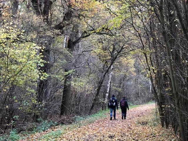 Genomineerden wandelroutes 2018 bekend