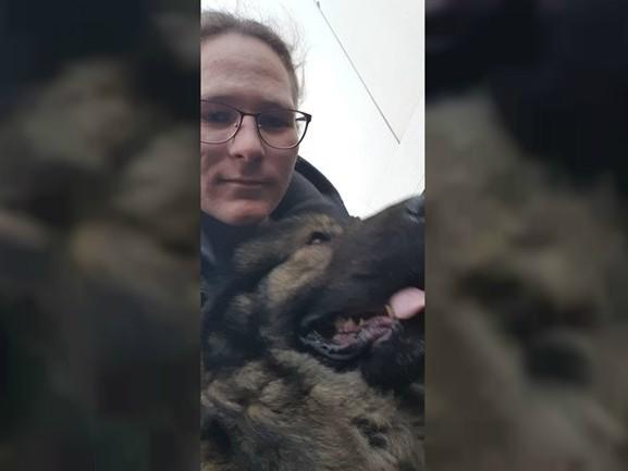 Noah redt hond van de A59 bij Oss: 'Je zag de angst in zijn ogen'