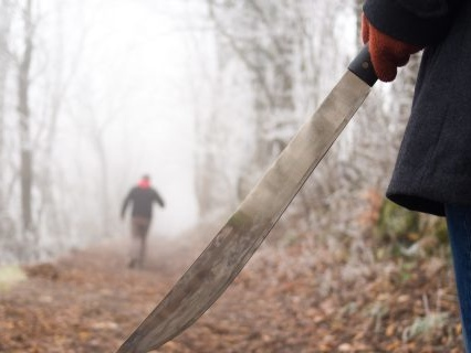 Home Alone Bishes: 11-Year-Old Boy Uses MACHETE To Thwart Home Intruder