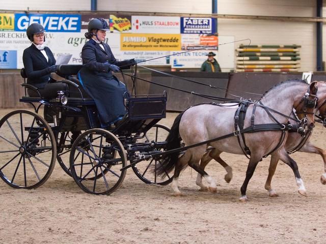 DK Noord: Dieke Slingerland kampioen en reserve met halfzussen