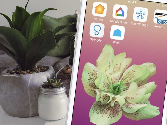 Dit zijn de beste HomeKit-alternatieven: een slim huis buiten Apple om