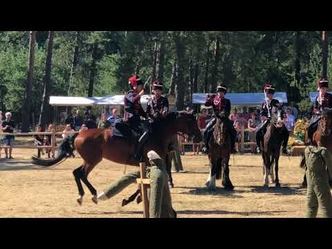 Dit is het weekend van het Paard op de Hoge Veluwe
