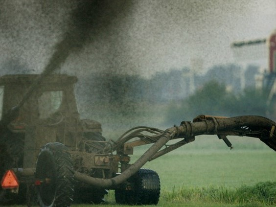 Eén op de vijf miljonairs is boer, rijken zitten vooral in veehouderij