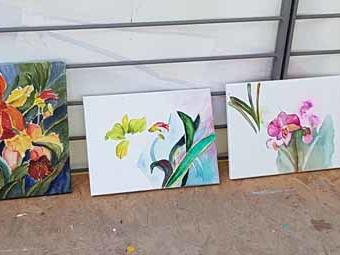 Gegen den Novemberblues – Farbige Orchideen