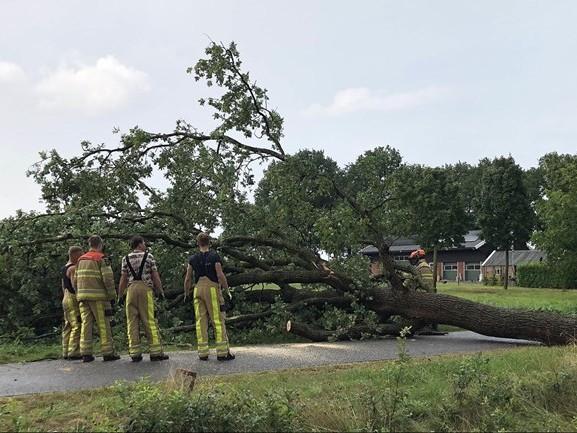 Onweer in Overijssel: omgevallen boom in Dalfsen, noodweer bij Lichtmis