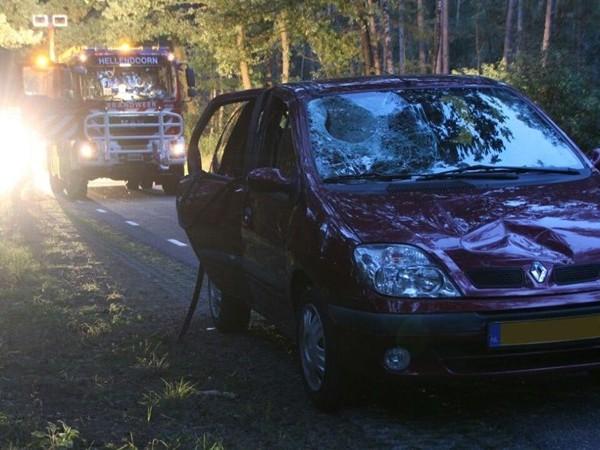 Brandweer haalt bomen weg na ongeval met vallende tak in Haarle