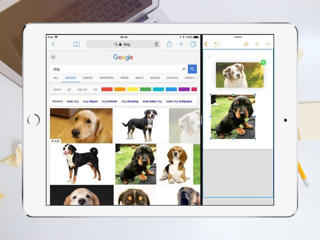 Tip: zo gebruik je drag & drop op de iPad met iOS 11
