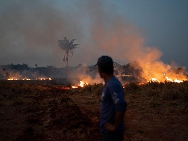 Brazilië stuurt leger naar Amazone om te blussen