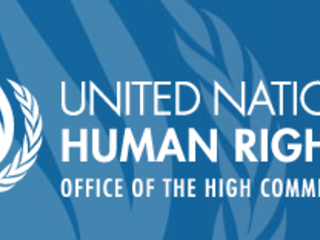 UN Special Rapporteur on the right to privacy | human rights