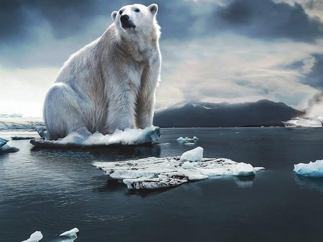 Nederlandse financiële instellingen omarmen CO2-meetmethode van PCAF
