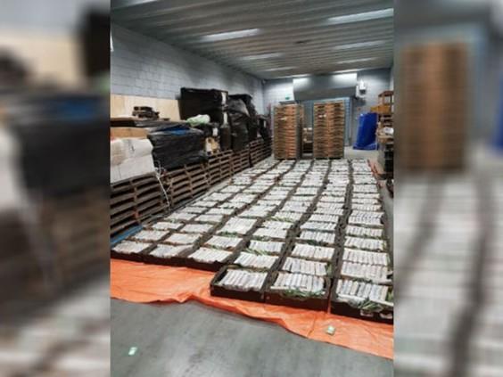 Miljoenenvangst: duizend kilo cocaïne tussen het fruit, zes mannen aangehouden